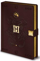 Prémiový notes Quidditch