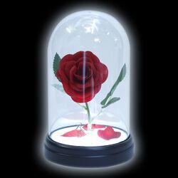 Enchanted Rose