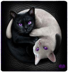 Flísová deka Yin Yang Cats